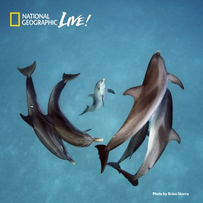National Geographic Live - Brian Skerry: Ocean Wild