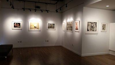 Campanella Gallery