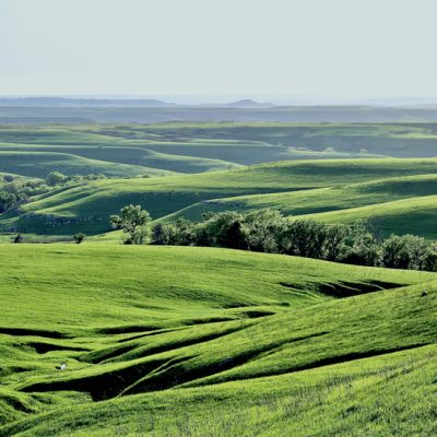 Visions of the Flint Hills Exhibition Opening