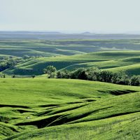 Visions of the Flint Hills Exhibition