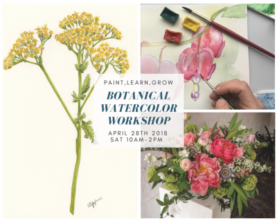 Botanical watercolor workshop