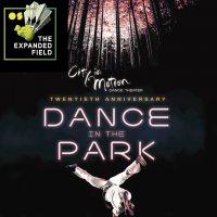 The 20th Annual Dance in the Park