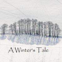 A Winter's Tale at The Kansas City Library