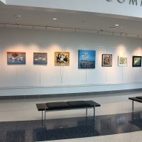 City of Lenexa Hall Art Gallery