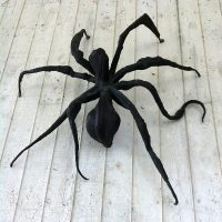 Spider Reveal Party