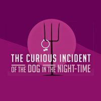 "Solve the Mystery of the ""Curious Incident of the Dog in the Night-Time""!"
