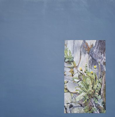 Adam Crowley: Still Life presented by Kiosk Gallery at Kiosk Gallery, Kansas City MO