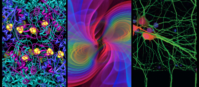 """VIRTUAL – Virtual Exhibition: Max Planck, """"Images of Science"""" presented by Goethe Pop Up Kansas City at Online/Virtual Space, 0 0"""