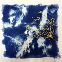 Cyanotype Printmaking Workshop presented by InterUrban ArtHouse at InterUrban ArtHouse, Overland Park KS