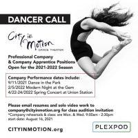 Professional & Apprentice Dancer Positions