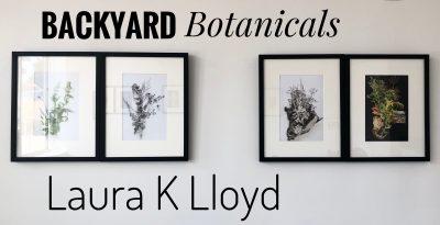 Backyard Botanicals presented by Home at Kansas City Society for Contemporary Photography, Kansas City MO